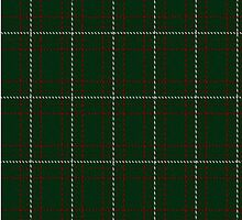02399 Dewi Sant Tartan Fabric Print Iphone Case by Detnecs2013