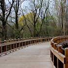 Curved Bridge by Meghan1980