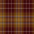 02401 DuPage County, Illinois E-fficial Fashion Tartan Fabric Print Iphone Case by Detnecs2013