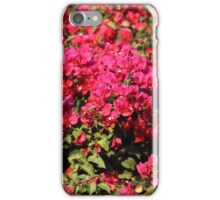 Bougainvillea Flowers iPhone Case/Skin