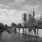 Notre-Dame de Paris by EmilFingal