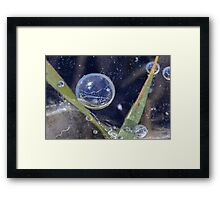 Ice and Air Bubbles Framed Print