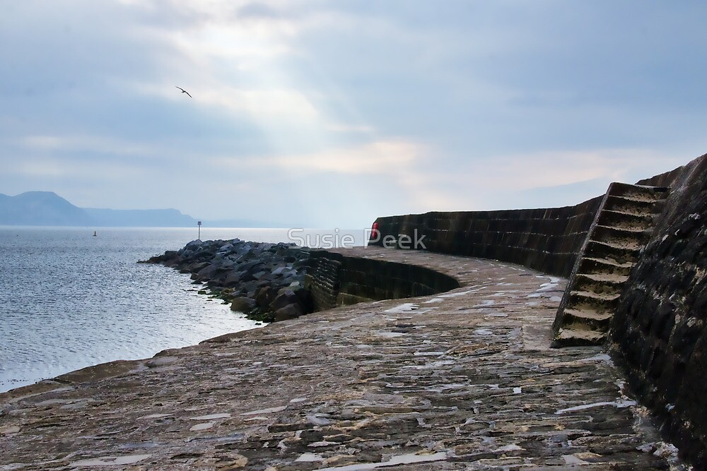 Cool & Cloudy At The Cobb by Susie Peek