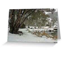 A seat in the snow Greeting Card