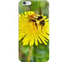 Bumble bee and Dandelion, iphone case iPhone Case/Skin