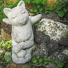 Cat Angel in My Garden by Jane Neill-Hancock