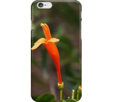 Orange blossoms of Ruttya iPhone Case/Skin