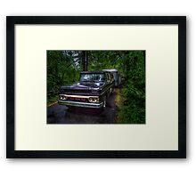 Evening Shade Framed Print