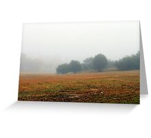 Once upon a misty morn.... Greeting Card