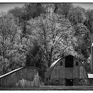 Southwest Wisconsin Barn Black and White by Thomas Young