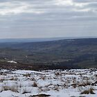 Westerdale Moor, North Yorkshire by acespace