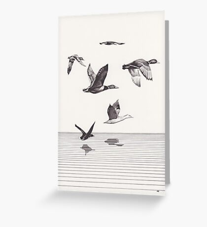 The Ducks in Winter Greeting Card