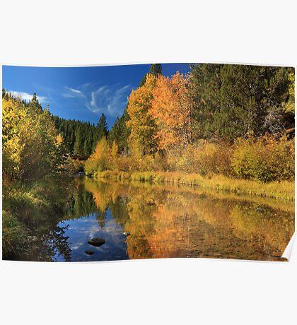 Autumn Along The Susan River Poster