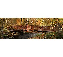 Bridge On Big Chico Creek Photographic Print
