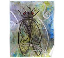 Red-Eyed Cicada Poster