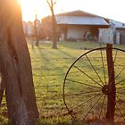 Wagon Wheel by AbigailJoy