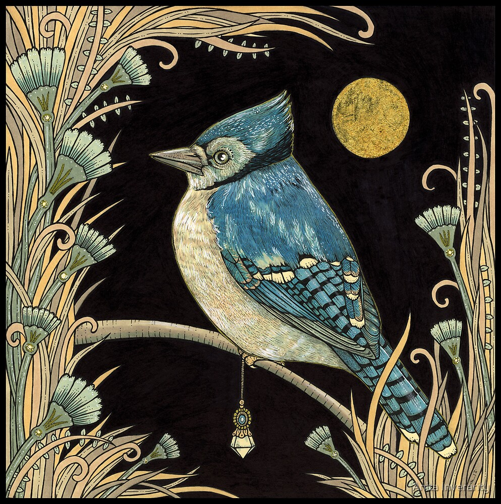 The Jay and the Jewel by Anita Inverarity