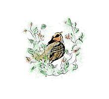 Floral Bird Photographic Print