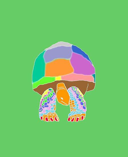 Giant Tortoise by salgallery