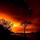 Star Gazin by Roddy Atkinson