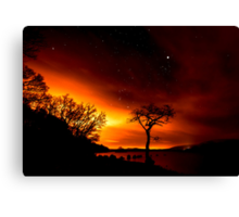 Star Gazin Canvas Print