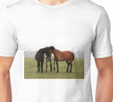 The Three Muskesteeds Unisex T-Shirt