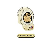 Albert II: The first monkey in space Photographic Print