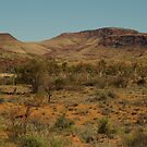 Joe Mortelliti Gallery - Hermannsburg, MacDonnell Ranges, Northern Territory, Australia. by thisisaustralia