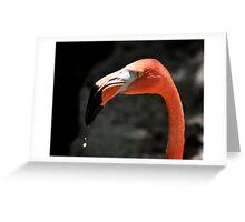 Drinking Greeting Card