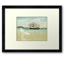 White Tail Framed Print