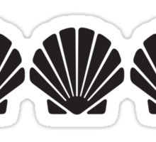 3 Sea Shells Sticker