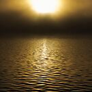 The Sun and the Lake by Peter Gray