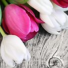RUSTIC TULIPS by Spiritinme