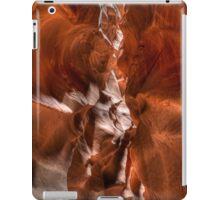 Sandstone Canyon - Buckskin Gulch iPad Case/Skin