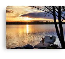 Golden joy Canvas Print