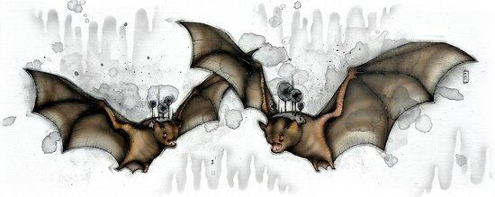 Cave Bats by Kaitlin Beckett