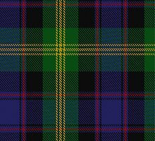 10019 Watson Clan/Family Tartan Fabric Print Ipad Case by Detnecs2013