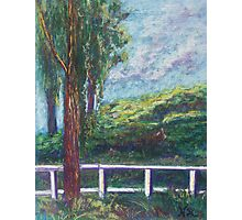 Old Temecula Field (pastel) Photographic Print