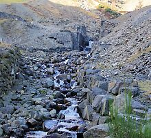 Old Mine Workings - Ullswater by Francis Drake