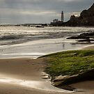Lighthouse View by Georden
