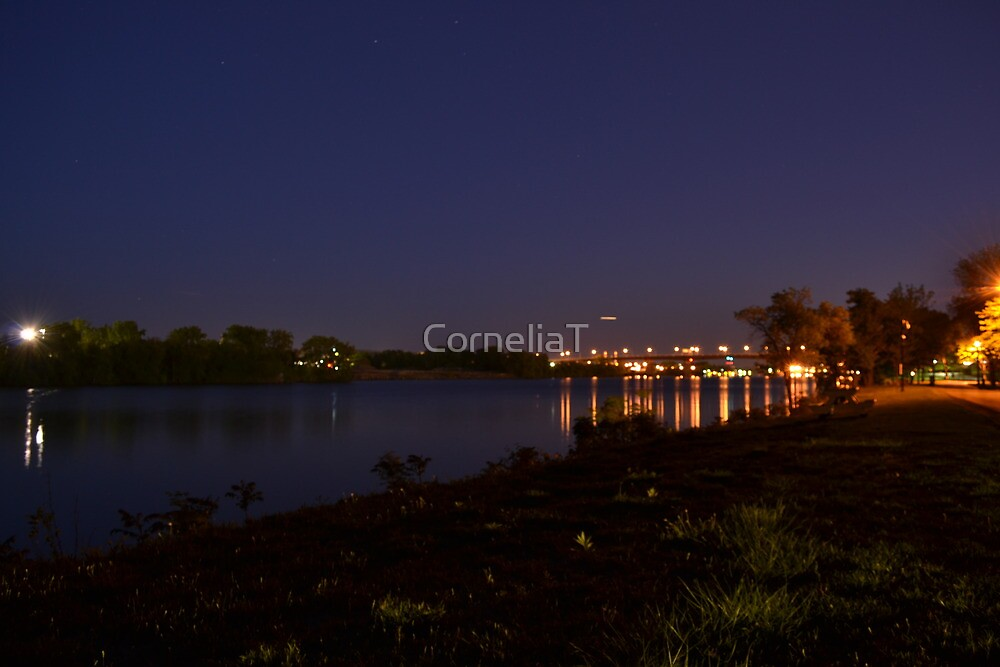 Landscape by CorneliaT
