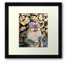 Drunk Monkey Framed Print