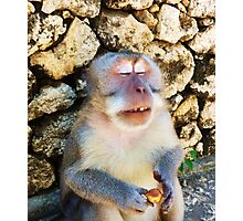 Drunk Monkey Photographic Print