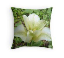White Crispy Curly Tulip Throw Pillow