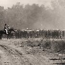 Mustering at Meda Station by Mark Ingram