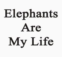 Elephants Are My Life  by supernova23