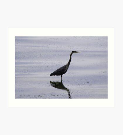 Heron Reflection Art Print