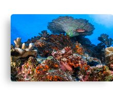 Perfect Camouflage  Canvas Print