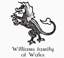 Welsh Heritage: Williams surname One Piece - Long Sleeve