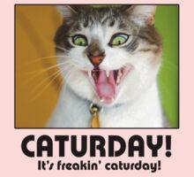 Caturday! Baby Tee